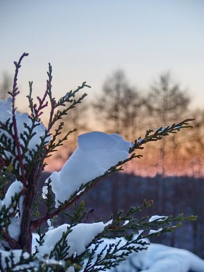 Temporär - Foto: Michael Mahlke